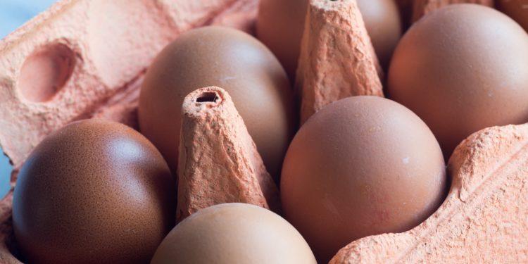 Eier im Eierkarton