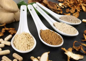 Pilze als Heilmittel in der Naturheilkunde
