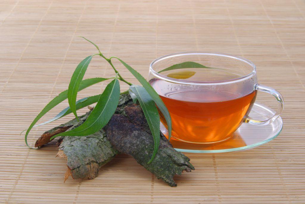 Ein Tee mit Weidenrinde
