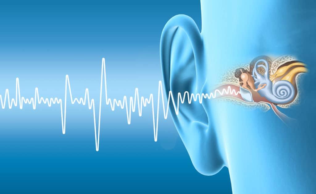 Schematische Darstellung des Ohres mit Schallwellen.