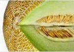 listerien-honigmelonen