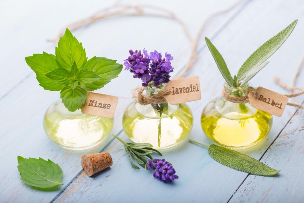 therische le - Minze, Lavendel, Salbei