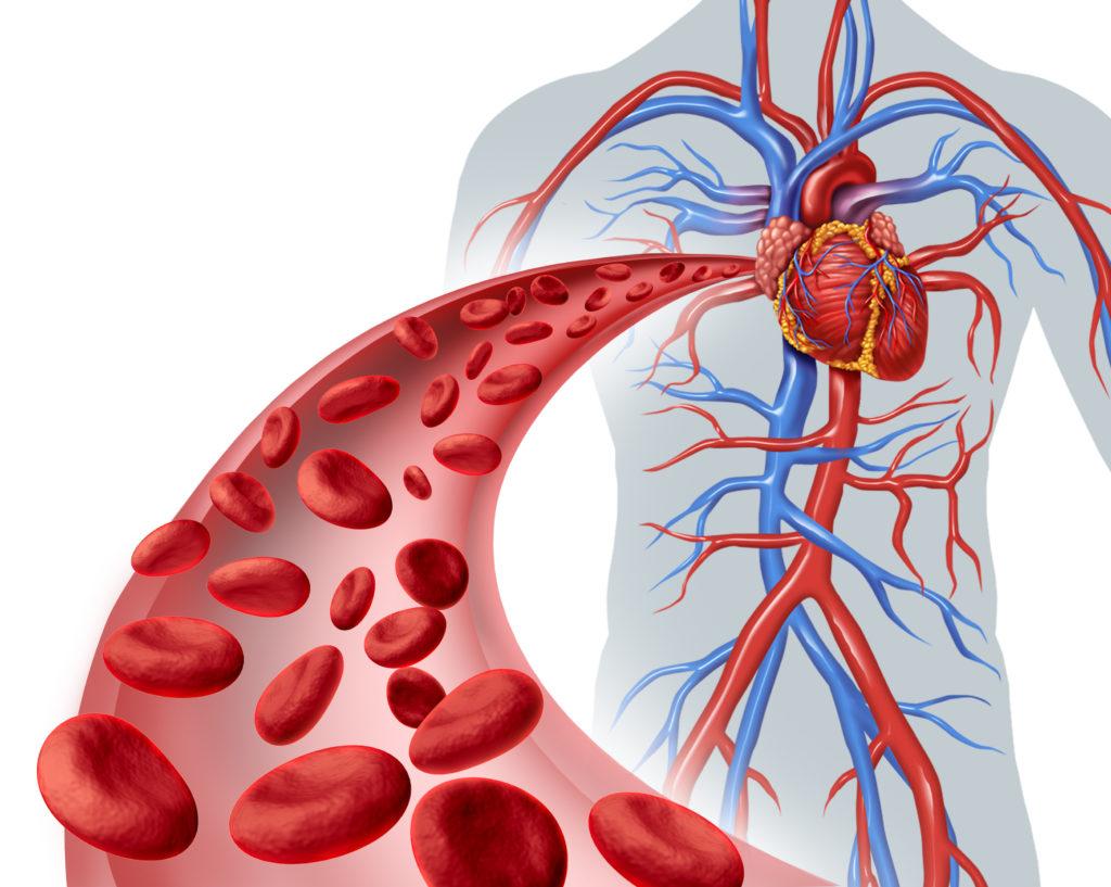 Herzschmerzen können aber müssen nicht mit dem Herzen zusammenhängen. Oftmals verbergen sich auch muskuläre Verspannungen dahinter. (Bild: freshidea/fotolia.com)