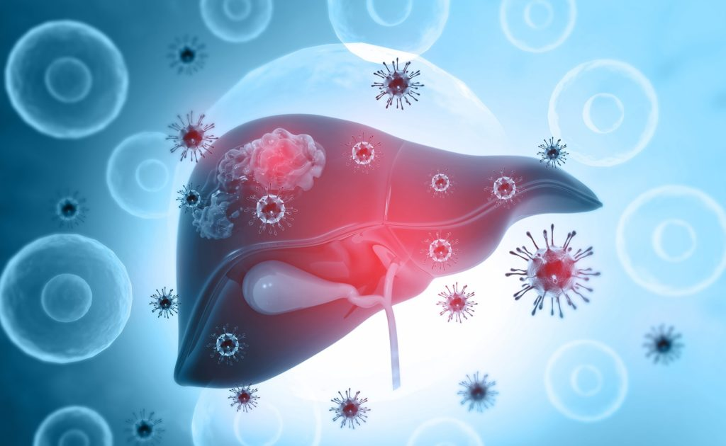 Schematische Abbildung der Leber mit eindringenden Viren.