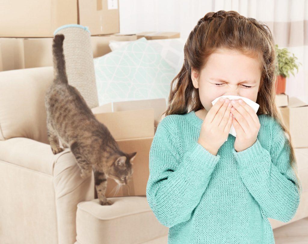 nicht genetische faktoren allergie