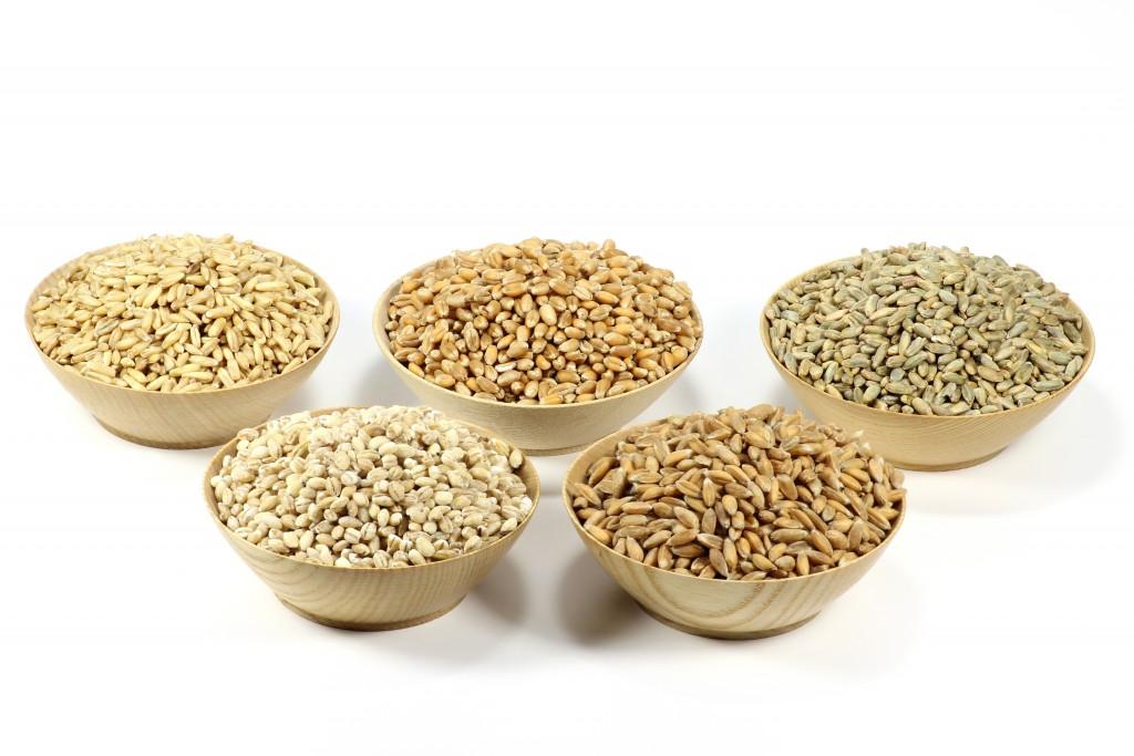 Getreide in Schalen