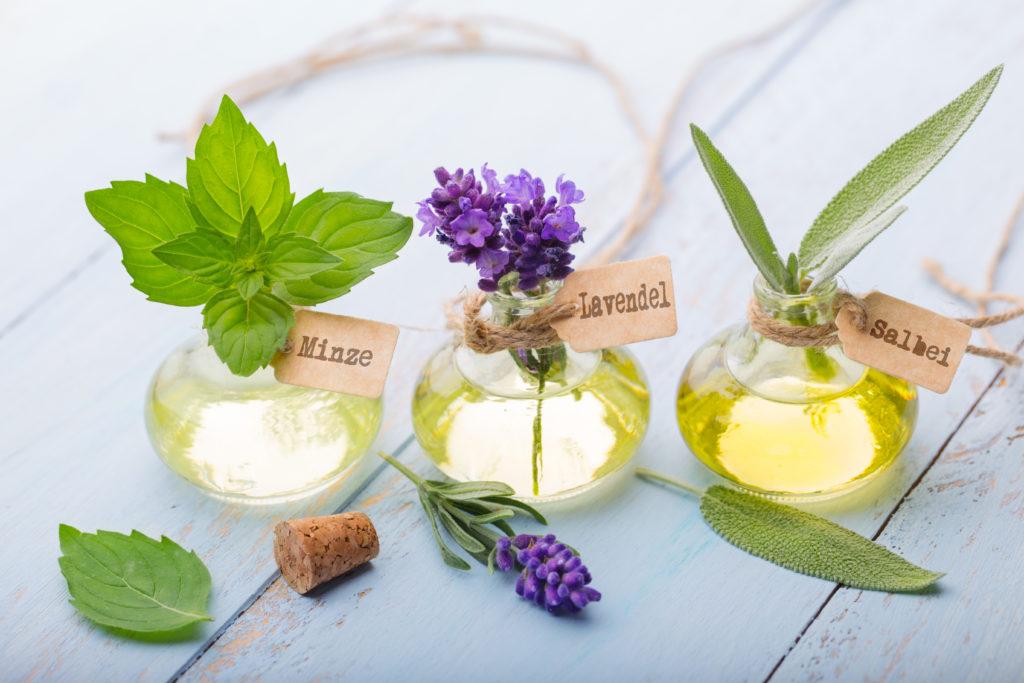 Salbei ist ein altes Hausmittel. Es lindert Erkältungsbeschwerden aber auch Zahnschmerzen.