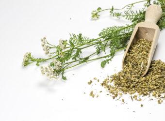 Schafgarbe wirkt entzündungshemmend und kann daher gut zur natürlichen Behandlung eines Furunkels eingesetzt werden. (Bild: Birgit Brandlhuber/fotolia)