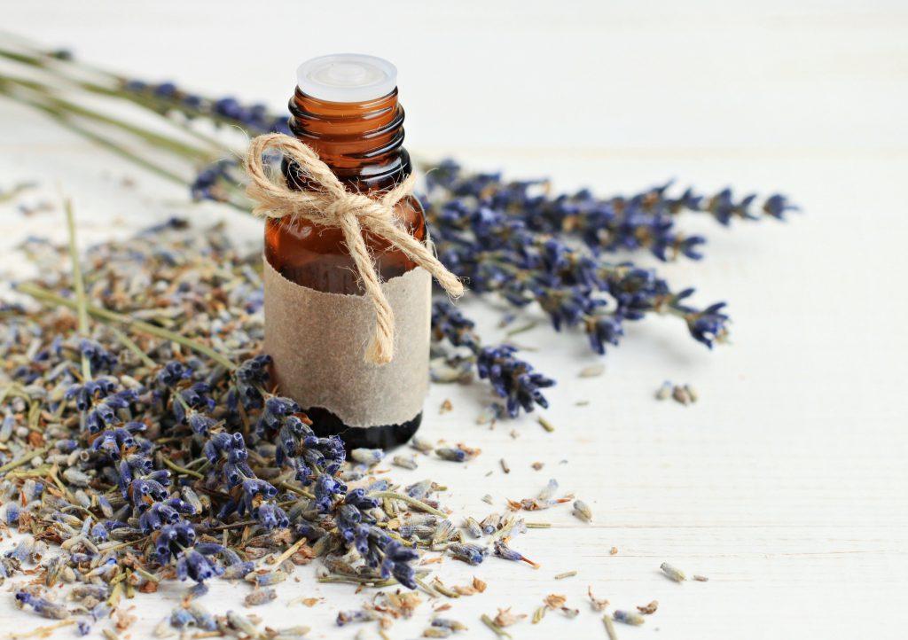 Lavendel wirkt nachweislich gegen Stress und kann in verschiedenen Formen zum Stressabbau eingesetzt werden. (Bild: Anna_ok/fotolia.com)