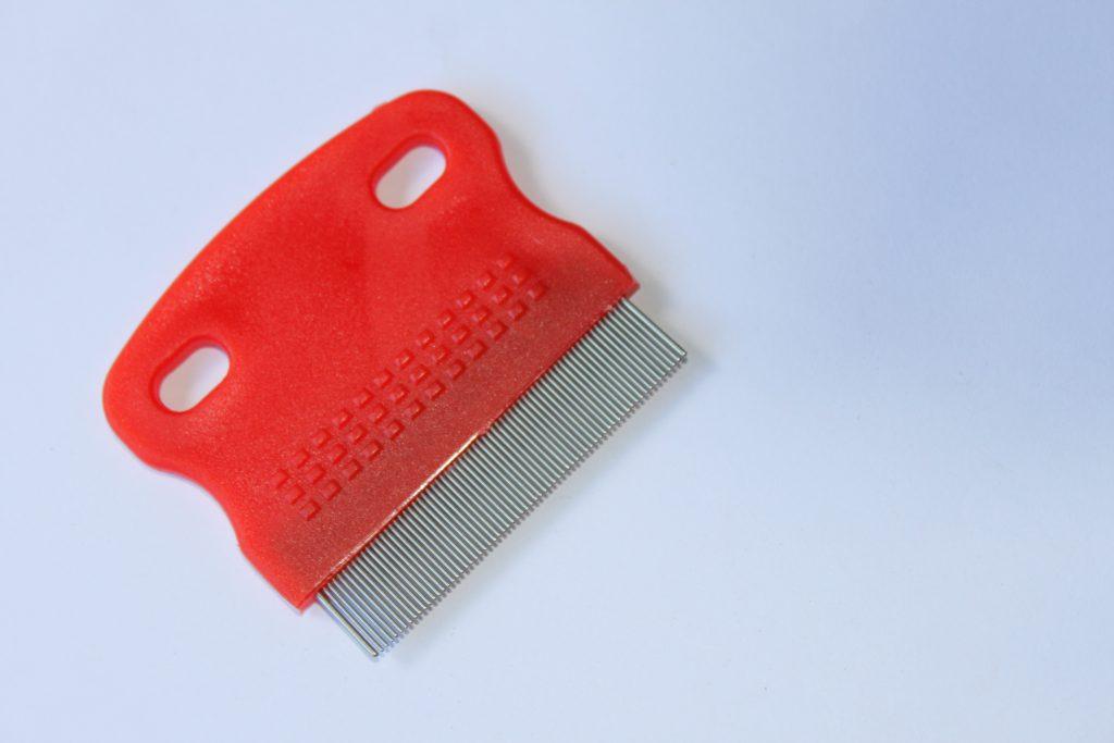 Ein spezieller Läusekamm ist wichtig, um die kleinen Plagegeister im Haar erkennen zu können. (Bild: K. Zernecke/fotolia.com)