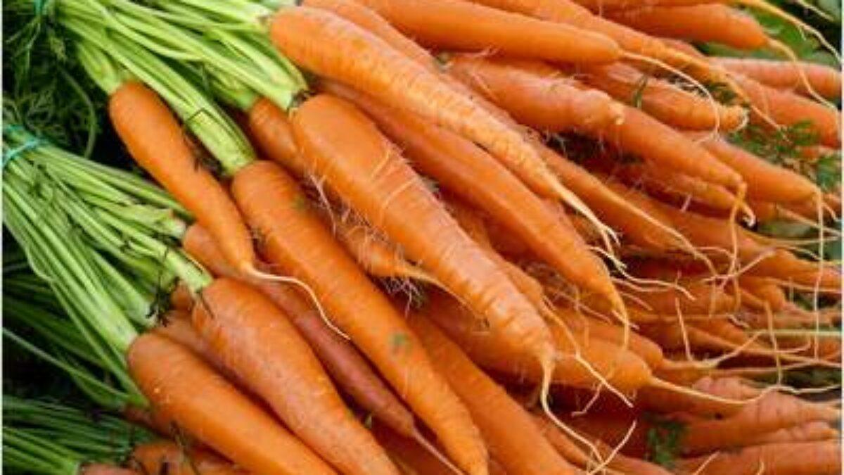 Karotten Sind sie gut für die Augen – Heilpraxis