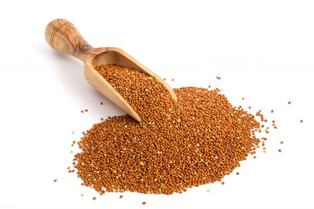 Braunhirse ist besonders reich an Kieselerde und daher eine empfehlenswerte Nahrungsergänzung bei Varizen. (Bild: emuck/fotolia.com)