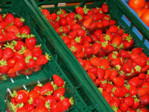 erdbeeren-zeit