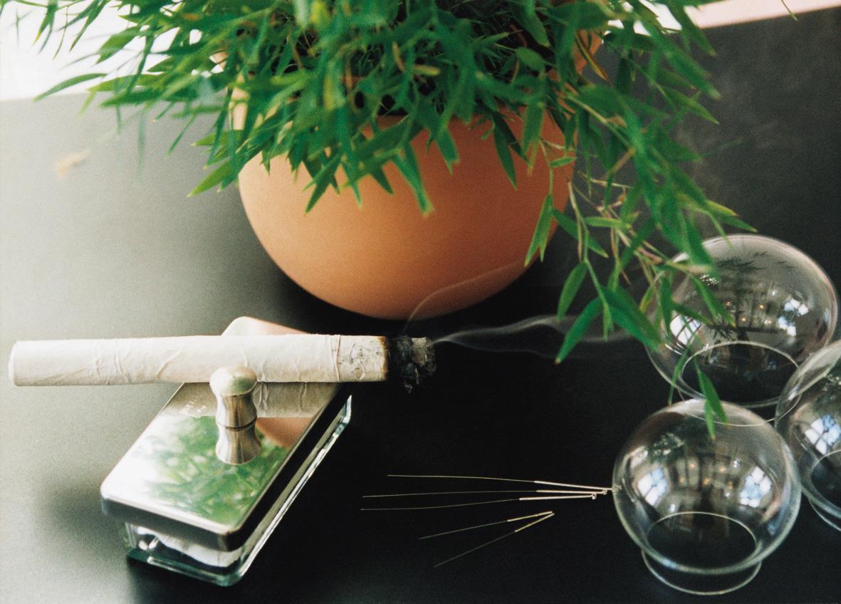 Chinesische Arznei- Bambus