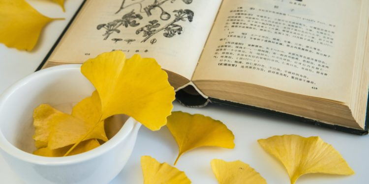 Gelbe Gingkoblätter in Schale neben Lehrbuch zur Pflanzenheilkunde