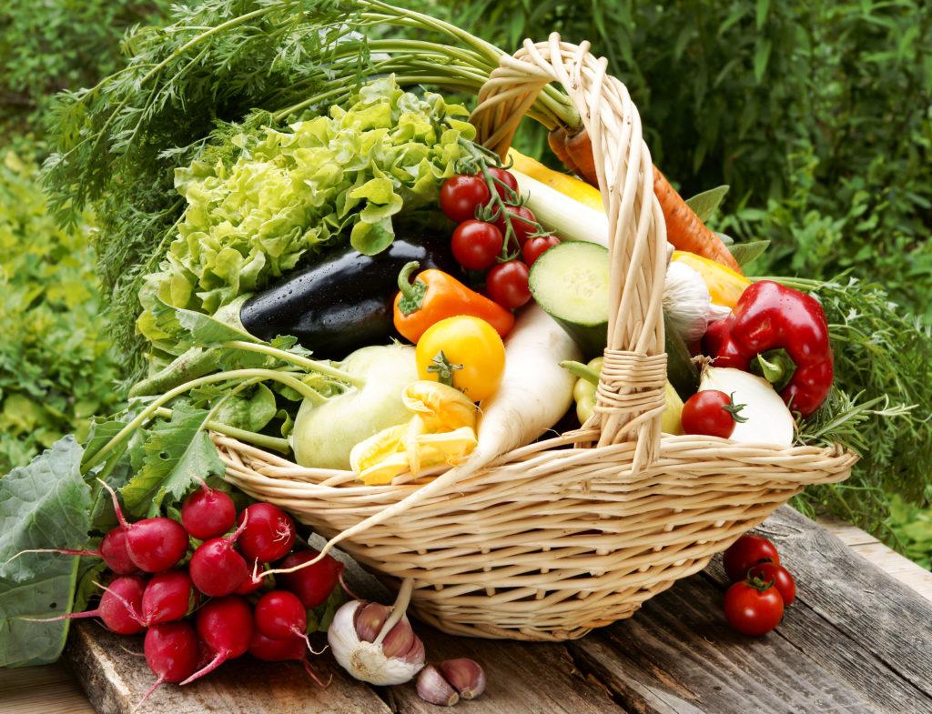 Sekundäre Pflanzenstoffe sind natürlich Behüter vor schweren Erkrankungen wie Krebs.