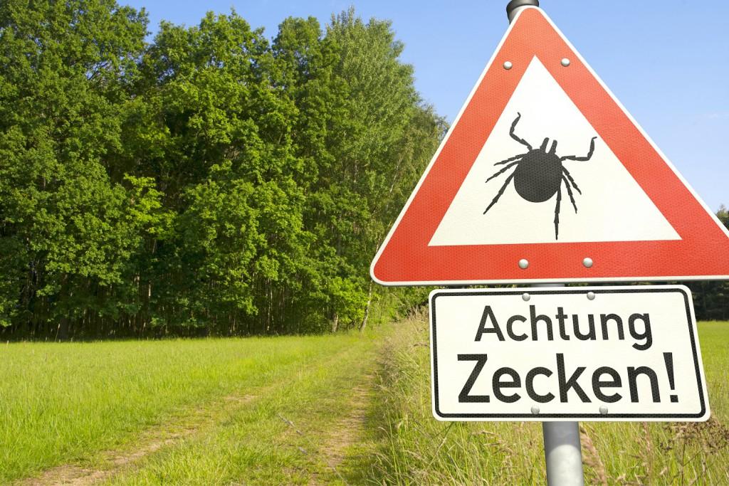 Achtung: In vielen Gebieten Deutschlands ist die Zeckengefahr bereits hoch. (Bild: bluedesign/fotolia)
