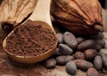 Studie zeigt positive Wirkung von Schokolade. Bild: hiphoto39 - fotolia