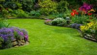 Viele Gartenpflanzen wie beispielsweise Tulpen oder Osterglocken sind giftig. (Bild: Krawczyk-Foto/fotolia.com)