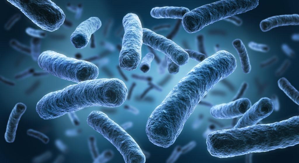 Bakterien der Gattung Legionella können schwere Lungenentzündungen verursachen. (Bild: psdesign1/fotolia.com)