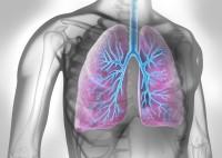 Husten und Atemnot können Hinweise auf eine chronische Lungenerkrankungen sein. (Bild: psdesign1/fotolia.com)