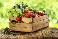 Tomaten richtig lagern. Bild: magdal3na - fotolia