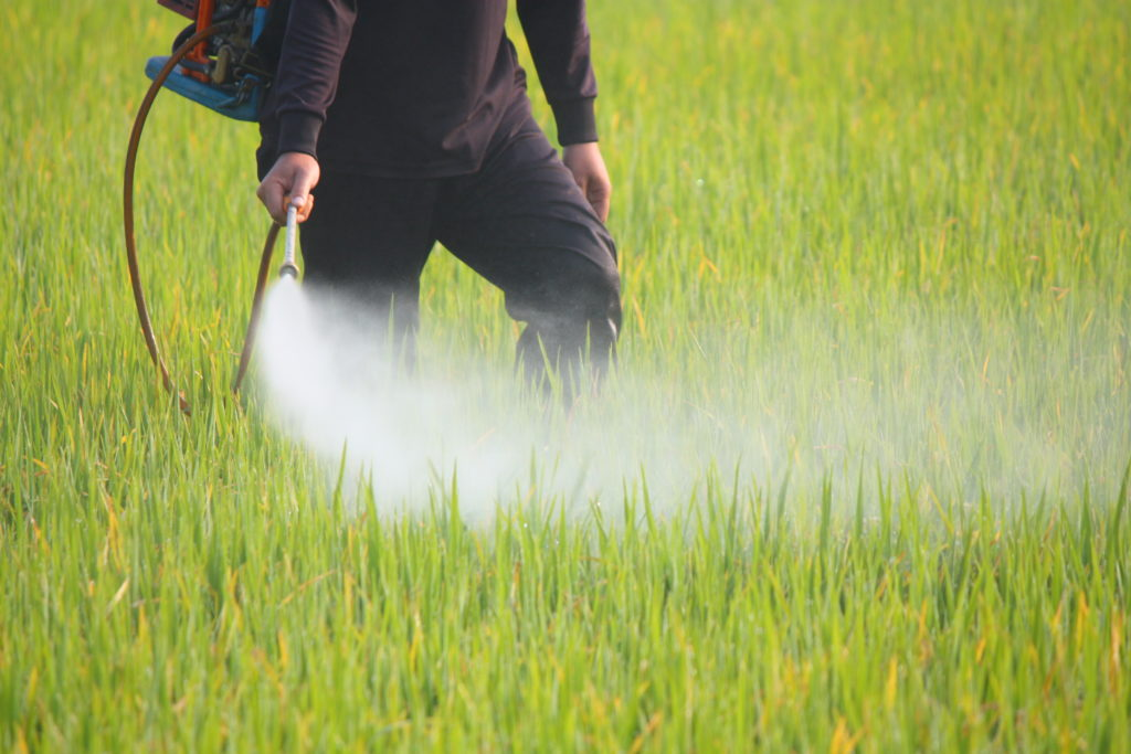 Umstrittenes Pestizid wird in Berlin eingesetzt. Bild: ComZeal - fotolia