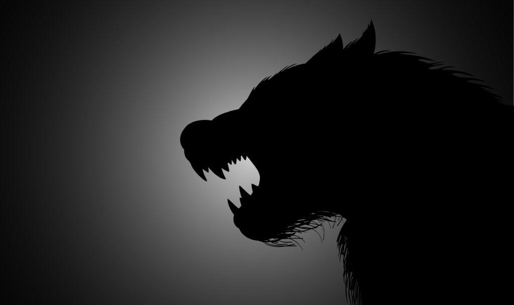 Haben die Geschichten von Werwölfen ihren Ursprung bei bestimmten Erkrankungen? (Bild: rudall30/fotolia.com)