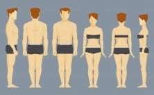 Nicht nur Apfel oder Birne: 17 verschiedene Körperformen. Bild: denisdubrovin - fotolia