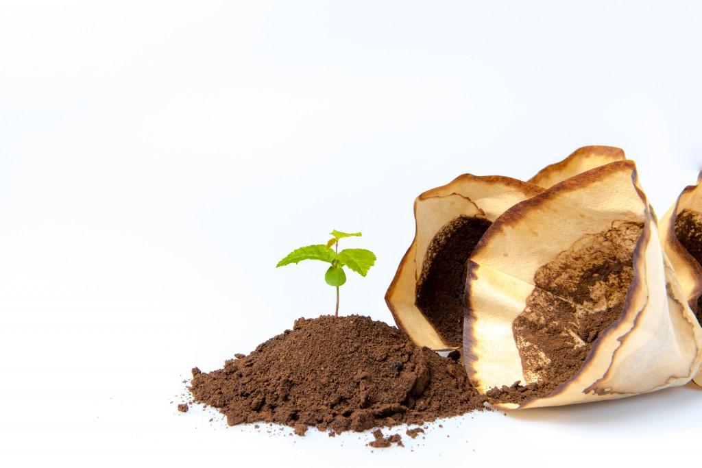 Kaffeesatz gegen Cellulite. Bild: Petra Nowack - peno - fotolia