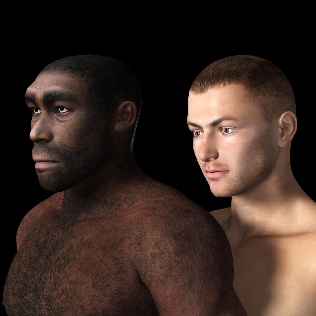 Eine neue Menschengattung entdeckt. Bild: crimson - fotolia