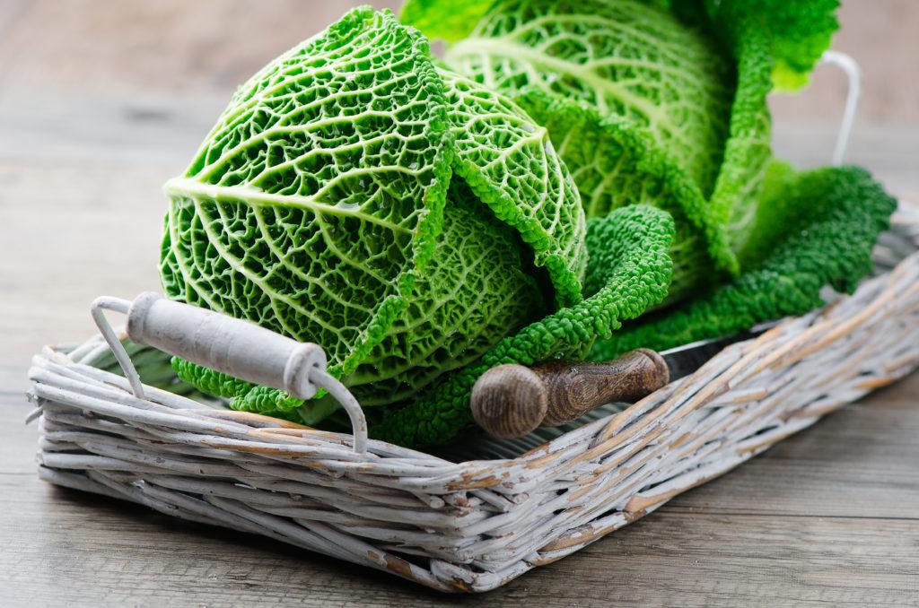 Wirsing schmeckt und stärkt das Immunsystem. Bild: Yevgeniya Shal - fotolia