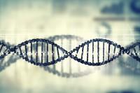 Die Entschlüsselung der Genome lässt auf neuen Ansätze für die Erklärung von Kranheiten hoffen. (Bild: Sergey Nivens/fotolia.com)