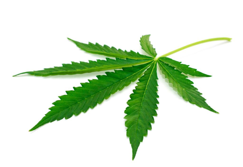 Viele Hersteller versuchen das Hanfblatt auf ihren Produten gezielt für die Vermarktung zu nutzen, obwohl keine Cannabis-Bestandteile enthalten sind. (Bild: johny87/fotolia.com)