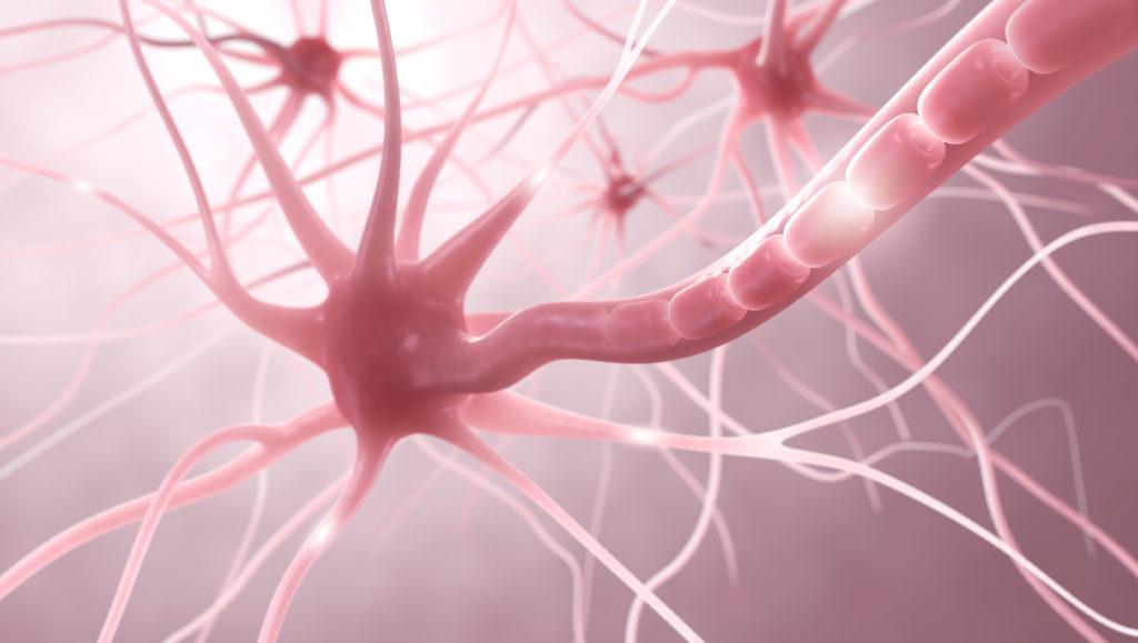 DIe richtige Ernährung kann bei der Behandlung von Multipler Sklerose helfen. (Bild: ag visuell/fotolia.com)