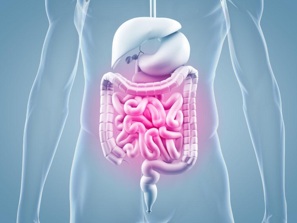 Chronische Bauschmerzen haben Einfluss auf das Gehirn und das Sozialverhalten. (Bild: ag visuell/fotolia.com)