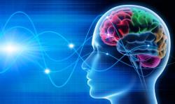 Die individuelle Gehirnaktivität kann zu Identifizierung genutzt werden. (Bild: psdesign1/fotolia.com)