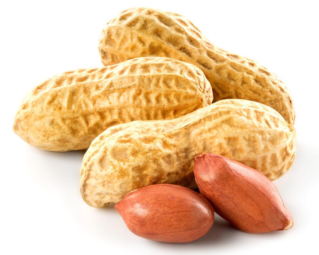 Viele Menschen reagieren allergisch auf Erdnüsse, weshalb eine korrekte Kennzeichnung der Lebensmittel besonders wichtig ist. (Bild: atoss/fotolia.com)