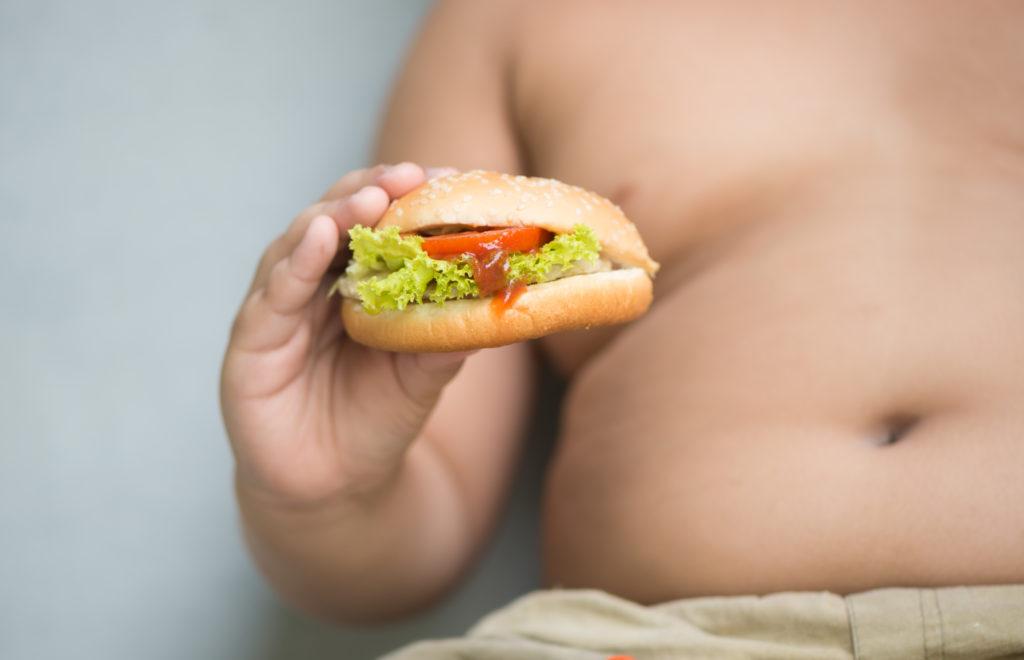 Fettleibige Kinder leiden bereits früh an Herzschäden. Bild: kwanchaichaiudom - fotolia