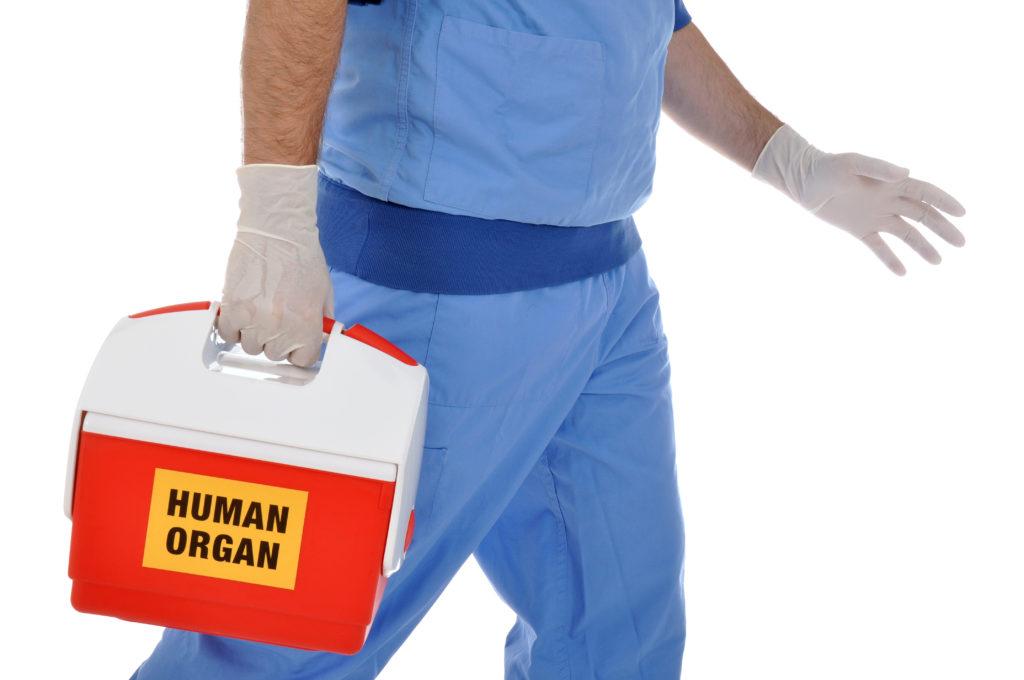 Organspende-Skandal weitet sich aus. Bild: Dan Race - fotolia