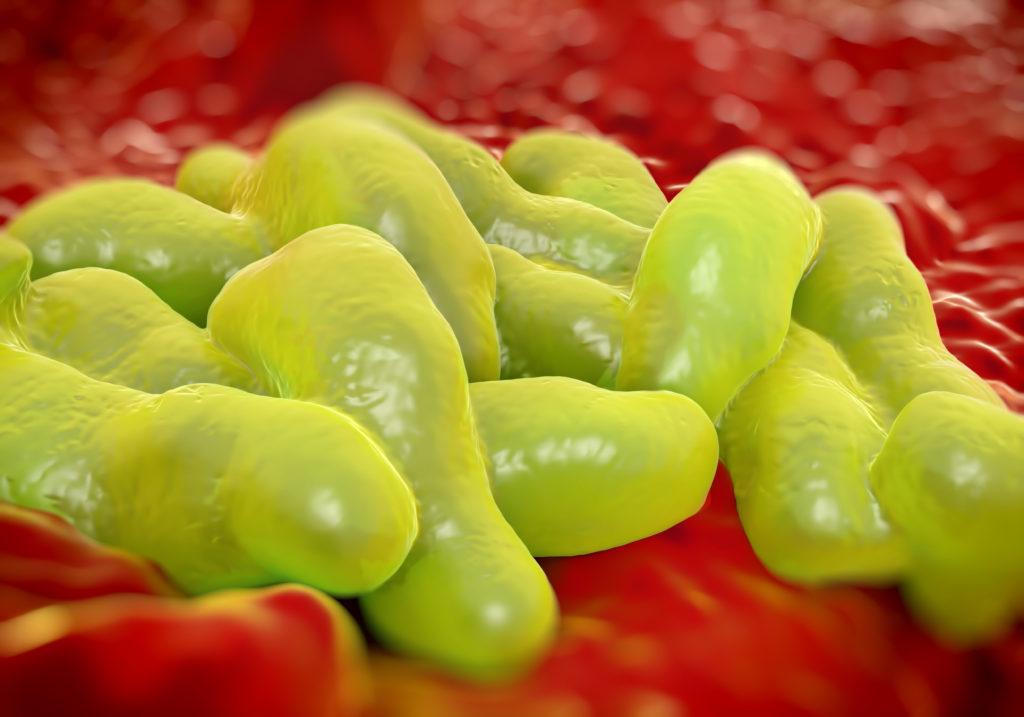 Campylobacter-Bakterien können von rohem Fleisch auf andere Lebensmittel übertragen werden. (Bild: royaltystockphoto/fotolia.com)