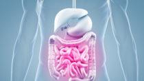 Mini-Kamera kann Darmkrebs schneller erkennen. Bild: ag visuell - fotolia