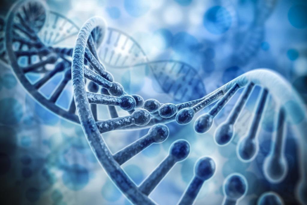 Bild: DigitalGenetics - fotolia