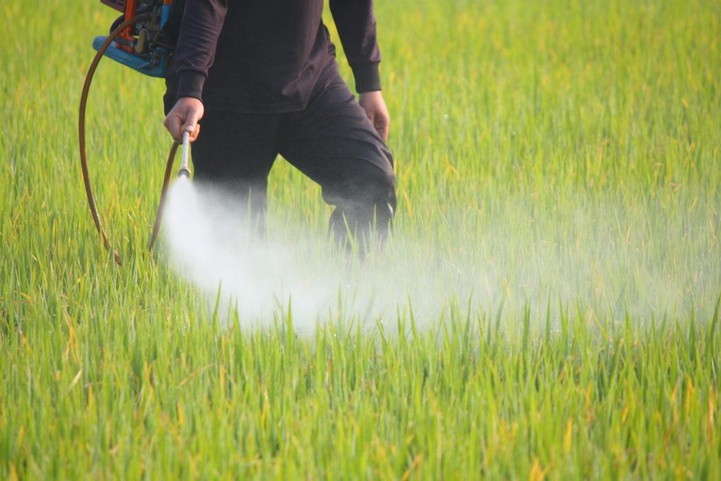Pestizide schädigen Kinderlungen wie Zigarettenrauch. Bild: Narong Jongsirikul - fotolia