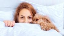 Richtig ausschlafen oder Schlaf nachholen? Was sind Fakten und was Mythen? Bild: Rasulov - fotolia