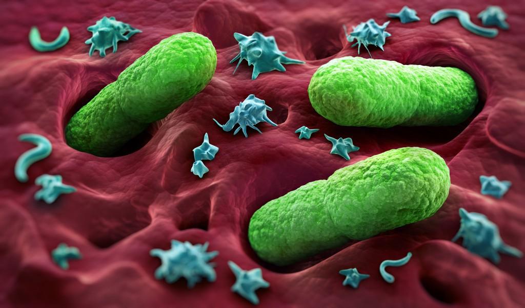 Antibiotika-Darmflora-schädigen