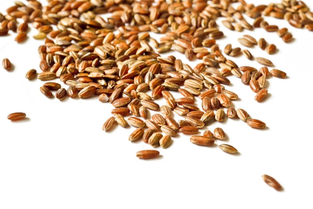 Nicht nur Reis und Reisprodukte, sondern auch zahlreiche andere Lebensmittel weisen zu hohe Belastungen mit Arsen auf. (Bild: Scvos/fotolia.com)