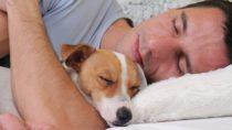 Hunde können Emotionen der Menschen fühlen. Bild: glisic_albina - fotolia