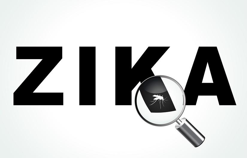Zika-Virus breitet sich aus. Schwangere Frauen sollten derzeit Reisen nach Lateinamerika vermeiden. Bild: nickylarson974 - fotolia