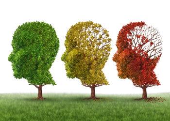 Drei Bäume in Kopfform.